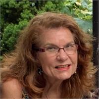 Lynn C Hartle's profile image